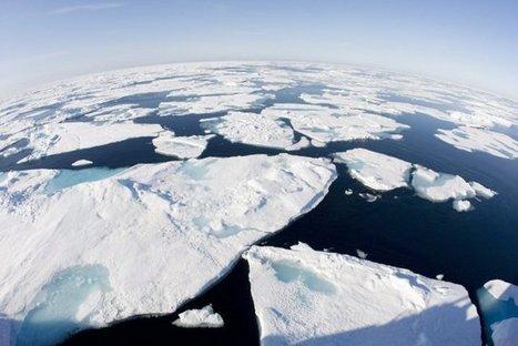 Arctique: la neige printanière fond plus vite que prévu | Dene Moore | Environnement | Développement durable et efficacité énergétique | Scoop.it