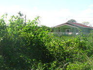 House Lot For Sale: BZE$30,000 at Master Street, near University Heights , Belmopan City, Cayo District, Belize | Belize You Inspire Me | Scoop.it