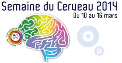 Des soirées de spectacle-débat pour explorer le cerveau | Paris ... | neuroscience- éducation | Scoop.it