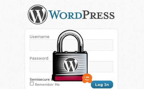 Recent Wordpress Hack Attempts and How to Stay Safe | taste it | Scoop.it