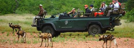 South Africa Safaris, For all Budgets | South Africa Safaris, For all Budgets | Scoop.it