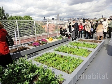 City Farmer News | Rooftop Seeding | Scoop.it