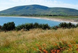 "Properties from Just $85000 in Ireland's Magical ""Kingdom"" - International Living 