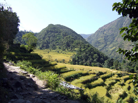 Rupinala and Larkya Pass Trek - Eco Holiday Asia | Eco Holiday Asia | Scoop.it