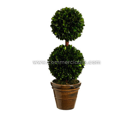 Preserved Trees | Preserved Boxwood Double Ball Topiary | Commercial Silk Int'l | Artificial, Silk Trees Knowledge Center | Scoop.it
