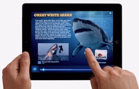 How to Use iPads for Personal Professional Development | Technology leadership articles | Scoop.it