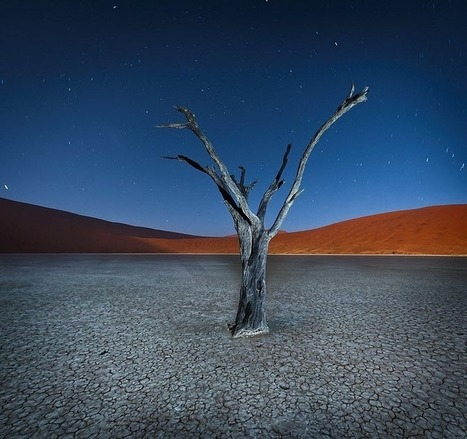 Surrealistic Landscape of Deadvlei, Namibia | Amusing Planet | scooping the world | Scoop.it