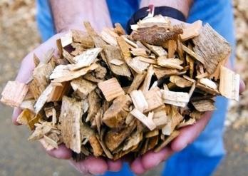 La bioenergía copa los Proyectos Clima aprobados por el Gobierno - Energías Renovables | Biomasa y desarrollo económico | Scoop.it