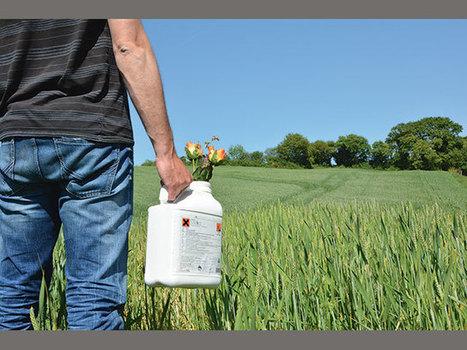 Produits phytosanitaires - combiner pesticides et solutions naturelles - Paysan Breton | Chimie verte et agroécologie | Scoop.it