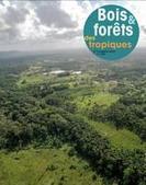 Bois et forêts des tropiques N° 326   Ecosystèmes Tropicaux   Scoop.it