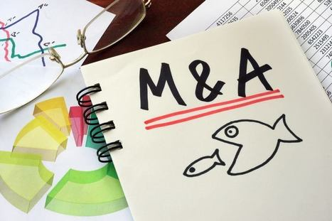 Current State of P/C Insurance Agency Mergers and Valuations | iMPACT Insurance Marketing | Scoop.it