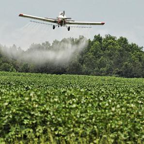 Proroga dei prodotti fitosanitari contenenti sostanze attive approvate e riportate nel Regolamento (UE) n. 1885/2015   Sicurezza alimentare   Scoop.it