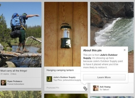 Pinterest Promoted Pins Are Now Live | Business in a Social Media World | Scoop.it