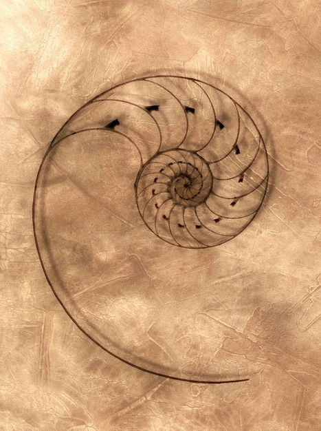 A Spiral Model of Change | Unfolding Leadership | Business change | Scoop.it
