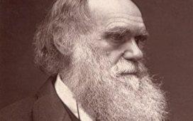 Charles Darwin e a origem das espécies - íntegra | Diário sobre as aulas de biologia | Scoop.it