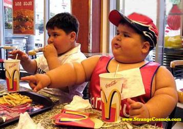 Obésité : et si on se mettait au régime bactérien ? | Régime alimentaire | Scoop.it
