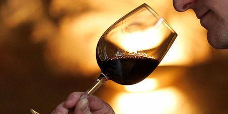 Fort recul des exportations de vins et spiritueux français   tio   Scoop.it
