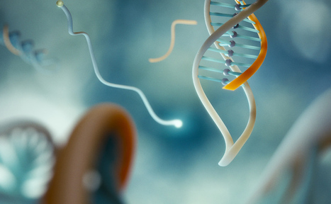 DNA Clamp to Grab Cancer Before It Develops | Bioinformatics Training | Scoop.it