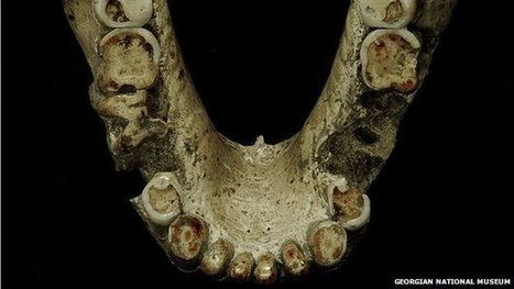 'Ancient humans' used toothpicks - BBC News | Ancient Origins of Science | Scoop.it
