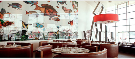DARWIN'S CAFÉ | Good things | Scoop.it