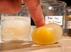 How to make a Naked Egg : Imagination Station | Science | Scoop.it