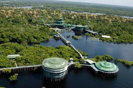 Usbruger: cidades e turismo pelo mundo em fotos, vídeos e notícias: Manaus, uma grande cidade no meio da selva amazônica | Dicas de Viagem, América e Ásia | Scoop.it