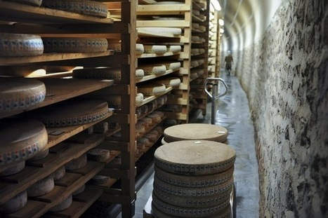 Un tunnel ferroviaire reconverti en cave d'affinage pour fromages | The Voice of Cheese | Scoop.it