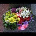 Malaysia Thankyou flowers | Birthday Flowers Malaysia | Scoop.it