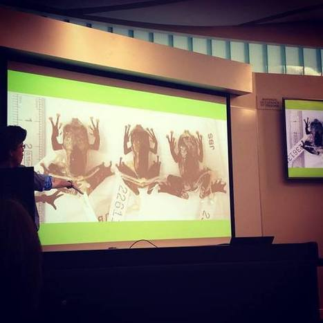 """Identifying """"bird-poop"""" frogs and other amazing scientific fun   Lunchtime Faculty Seminars   Scoop.it"""