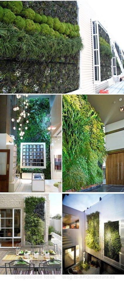 Fytowall: sistema para jardines verticales con riego hidropónico | Cultivos Hidropónicos | Scoop.it