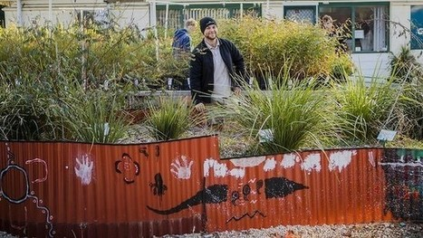 Canberra's Indigenous gardener Adam Shipp reaps rewards at Greening Australia | Australian Plants on the Web | Scoop.it