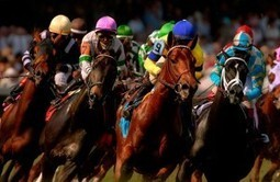 Kentucky Derby Festival Raises Record Funds | Everything & All | Scoop.it