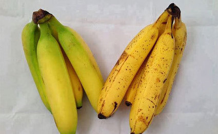 After Reading This, You'll Never Look At A Banana The Same Way Again   Health- Knowledge is power   Scoop.it
