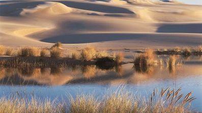 World's record-breaking sand dunes - Fox News | desert photography | Scoop.it