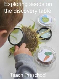 Exploring the seeds of fall in preschool | Digital story | Scoop.it
