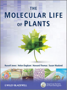 Wiley: The Molecular Life of Plants | Databases & Softwares | Scoop.it