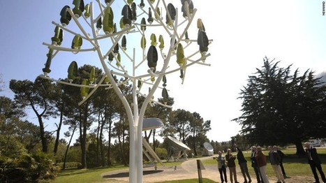 This tree could power your electric car   GTAV AC:G Y7 - Place and liveability   Scoop.it