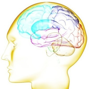Gain Clarity About the Transparent Brain: Expect Labs in Barcelona! | Expect Labs Chatter | Scoop.it