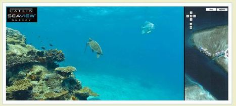 Google Maps Mania: Google Underwater Sea View | Educatief Internet | Scoop.it