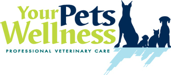 Wellness Plans   Your Pet Wellness   Dog Care Guide   Scoop.it