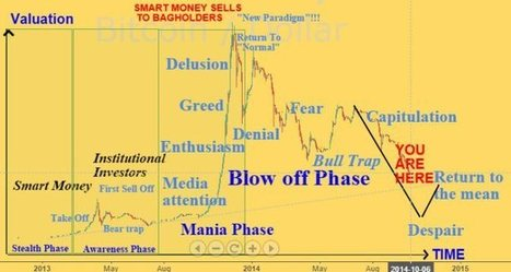 The Most Recent Bubble Psychology - Bitcoin Price | Bitcoin newsletter | Scoop.it