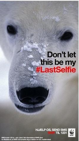 Photos campagne WWF : Selfies des animaux en voie de distinction | Protection animale | Scoop.it