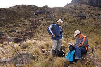 En 40 años podrían escasear páramos y bosques andinos | Agua | Scoop.it