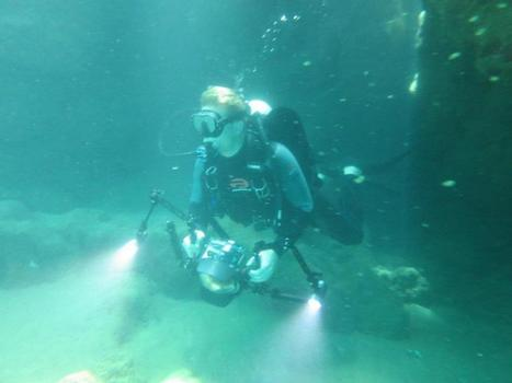 LinkedIn Paid An Employee $3,000 To Go Scuba Diving | Amazing World | Scoop.it