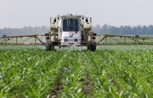 Herbicide Increase in GMO Crops Is Causing Increase in Superweeds - Organic Connections   Searching for Safe Foods   Scoop.it