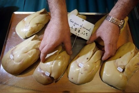 MEPs call for Europe to ban sale of foie gras: theparliament.com   Politically Incorrect   Scoop.it