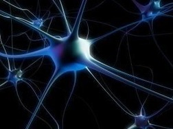 Complications of Motor Neuron Disease_Cells Center China | Cells Center China | Scoop.it