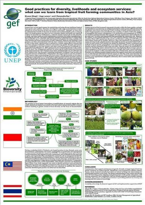 Good Practices :: Tropical fruit (methodologies and adaptive ... | Agricultural Biodiversity | Scoop.it