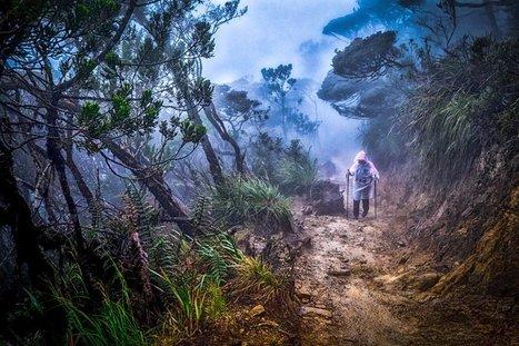 Hiking after the rain | Fujifilm X Series APS C sensor camera | Scoop.it