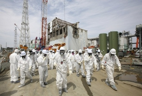 Fukushima Radiation Significantly Lower Than Expected, Study Says | Amazing Science | Scoop.it